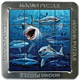 shark 652 - 3D Lenticular Puzzle - Sharks (Square)