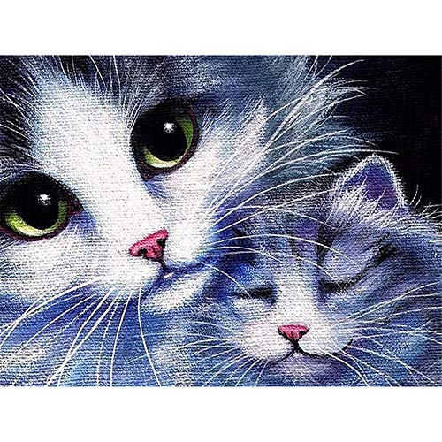 Paint-by-Number Kits for Adults - Lovely Kitties - Includes Brushes, Paints and Numbered Canvas - 16x20 Inch - Great for Kids and Adults,Without Frame
