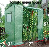 BenefitUSA TMTGH Portable Outdoor Planting Tomato Summer/Winter Backyard (7'X3'X6') Greenhouse, Green