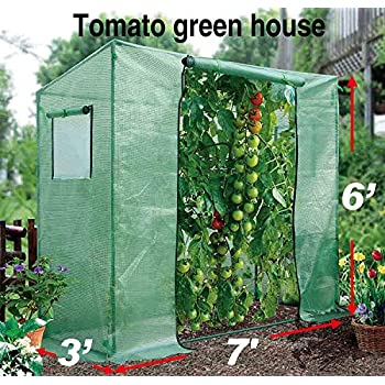 New 7/' x3/' x6/' Tomato Walking-in Greenhouse Outdoor Plant Gardening Green House