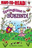 Springtime in Bugland!, David  A. Carter, 1442438924