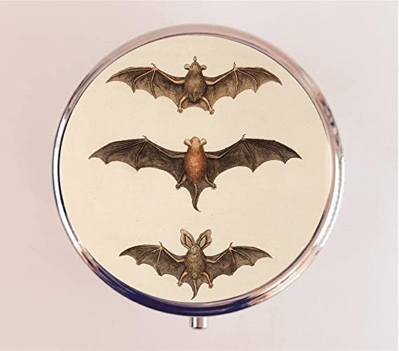 Amazoncom Victorian Bats Pill Box Pillbox Case Goth Vampire Gothic