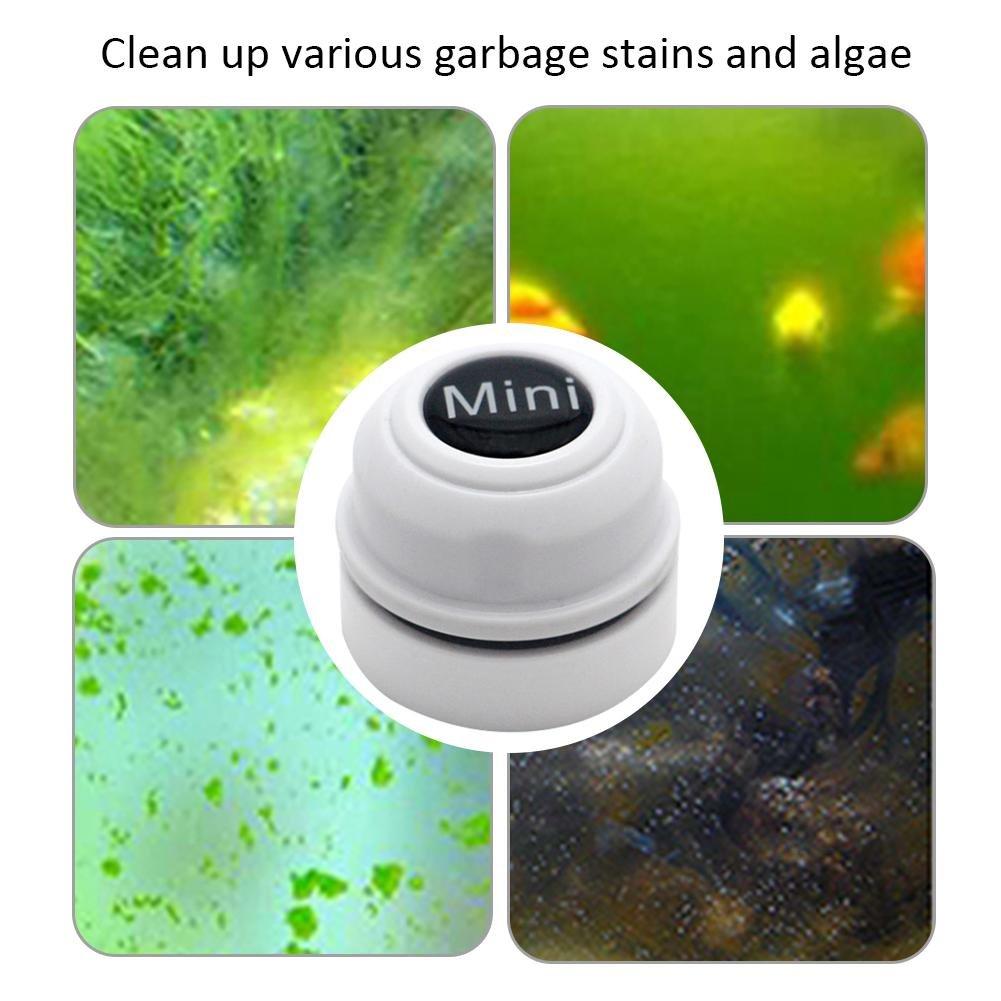 AITOCO Cepillo magnético para Acuario, Limpiador de Peces, para Limpieza de Algas de Cristal, Cepillo Flotante de Doble Cara: Amazon.es: Productos para ...