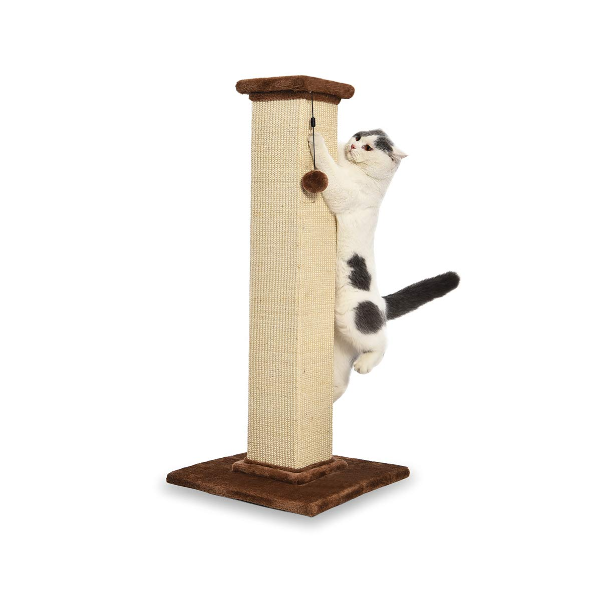 AmazonBasics Large Premium Tall Cat Scratching Post - 16 x 35 x 16 Inches, Brown Carpet by AmazonBasics
