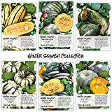 Seed Needs Winter Squash Seed Collection, Set of 6 Non-GMO Seed Packets (Sweet Meat, Sweet Dumpling, Delicata, Hubbard, Table King & Queen) Seeds