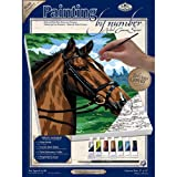 Royal & Langnickel Painting by Numbers Small Canvas Painting Set, Thoroughbred