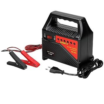 ECD Germany Cargador de baterías AC 230V - 50Hz - 64W Cable ...