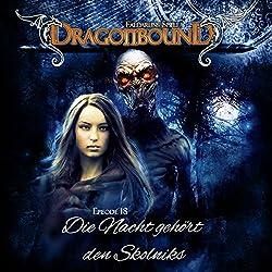 Die Nacht gehört den Skolniks (Dragonbound 18)