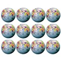 Novelty Golf Balls - World Map Design Professional Practice Golf Ball for Kids Woman Men, Ideal Golf Gift Christmas Gift by Aoduoer