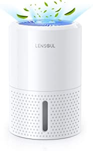 LENSOUL Dehumidifier 35oz(1000ml) Portable and Compact Dehumidifiers for 2200 Cubic Feet (260 sq ft) Whisper Quiet for Home, Bedroom, Basement, Bathroom, Garage, Closet, RV with Auto Shut Off