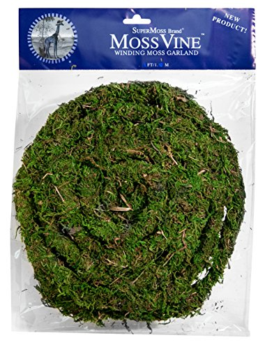 Garland Fresh (SuperMoss (22711) MossVine Garland, Fresh Green, 12ft)
