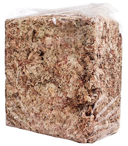 - SuperMoss (22330) Orchid Sphagnum Moss Dried, Natural, 2.4lbs Small Bale