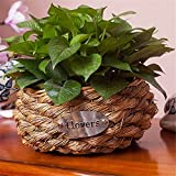 EXDJ Handmade straw flower basket rattan Wall flowerpot Creative Flower Basket Home decoration Products,26x13cm