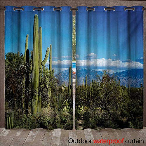 - Desert Outdoor Curtains for Patio Sheer Wide View of The Tucson Countryside with Cacti Rural Wild Landscape Arizona Phoenix W84 x L108(214cm x 274cm)