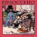 Pinocchio Audiobook by Carlo Collodi Narrated by Susan O'Malley