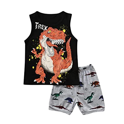 Oldeagle Baby Boys Girls Long Sleeve Cartoon Dinosaur Print Tops+Pants 2PCs Pajamas Clothing Set: Clothing