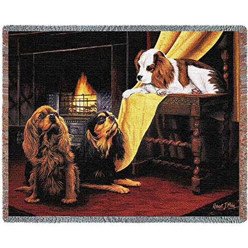Pure Country 1148-T Cavalier King Charles Spaniel Pet Blanket, Various Blended Colorways, 53 by (King Charles Ornament)