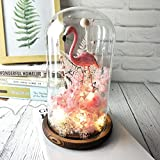 Pink Flamingo Decorations,Flamingo Snow Globe with Preserved Fresh Flower Remote Led String Lights,Artificial Dried Flower Home Decor in Glass Dome Wooden Base Gift for Mother's day (Pink flamingo)