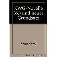 KWG-Novelle (6.) und neuer Grundsatz