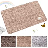 Indoor Doormat Super Absorbs Mud Absorbent Rubber Backing Non Slip Door Mat for Front Door Inside Floor Dirt Trapper Mats Cotton Entrance Rug, 20'x 31.5' Shoes Scraper Machine Washable Carpet (Brown)