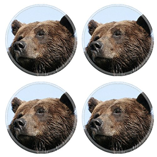 MSD Natural Rubber Round Coasters IMAGE ID: 706383 Head shot of a grizzly bear with slightly wet fur against a blue clear sky taken in British Columbia