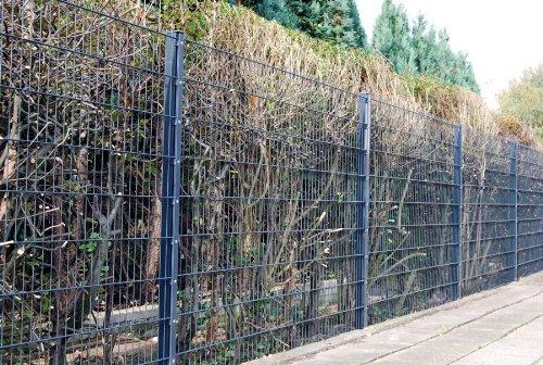 Zaun 25m Komplett-Angebot 1,83cm Höhe anthrazit ...