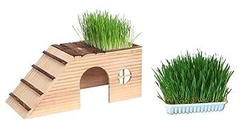 Casa para roedores con rampas Nature – Incluye 2 x 100 g Hierba para roedores Conejos