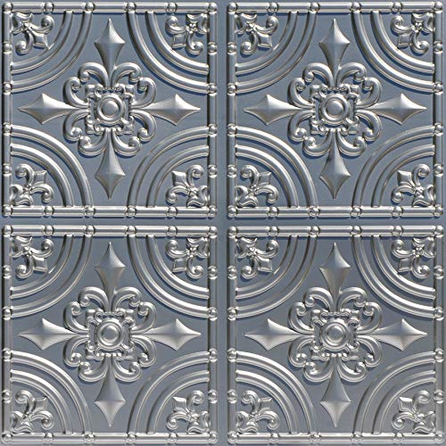 From Plain To Beautiful In Hours 205sr-24x24 Ceiling Tile, Silver ()
