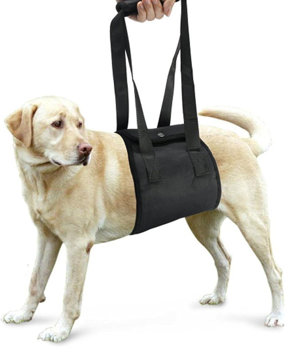 Perro elevación soporte arnés canino ayuda rehabilitación arnés para perros con patas traseras débiles, 10-25KG