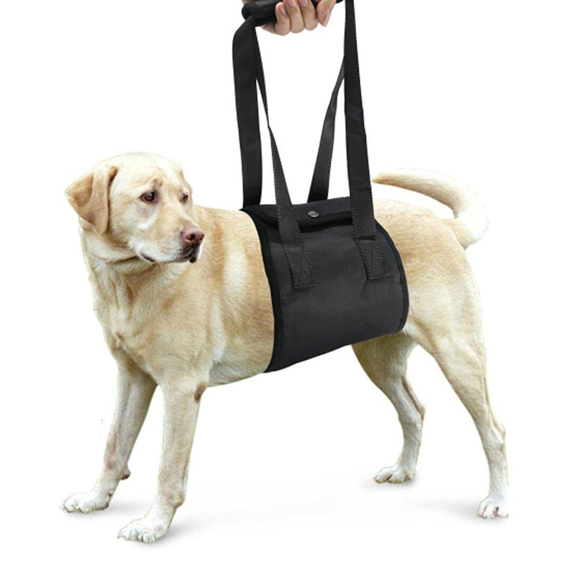 Perro elevación soporte arnés canino ayuda rehabilitación arnés para ...