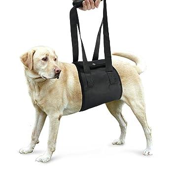 ueetek perro canina de cableado de levantamiento apoyo ayuda rehabilitación arnés para perros con débil patas