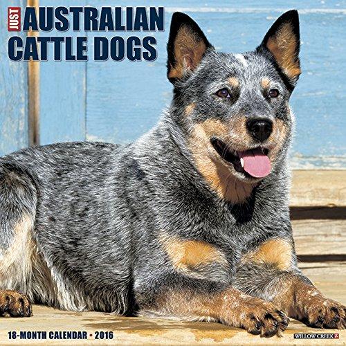 2016 Just Australian Cattle Dogs Wall Calendar pdf