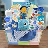 Welcome Home Baby Boy Medium Gift Basket