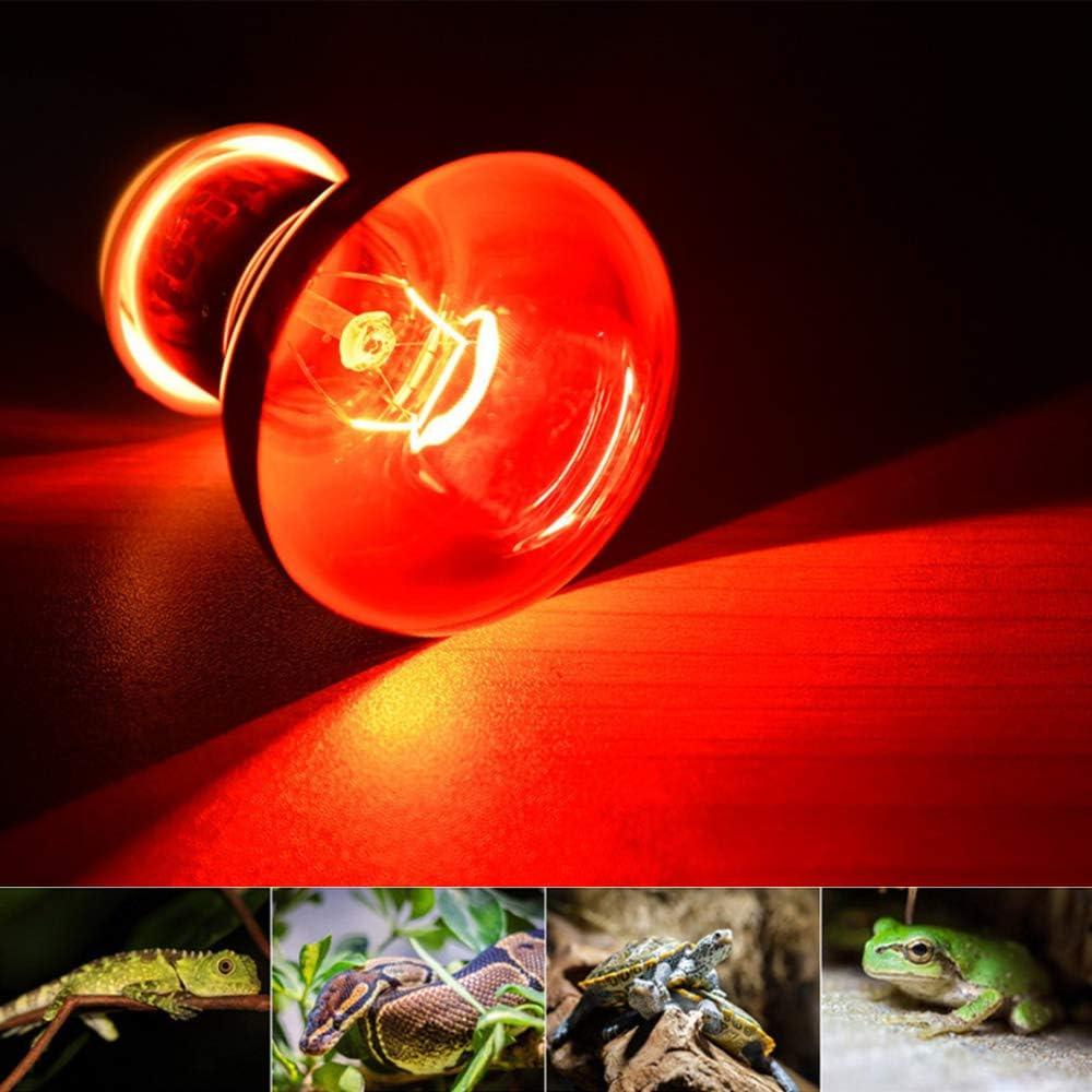 MD Lighting 25w Infrared Heating Lamp//Light//Bulb 2 Pack Red as Bearded Dragons 110v E27 Basking Spot Light Bulbs for Reptile and Amphibian Turtles Ball Pythons
