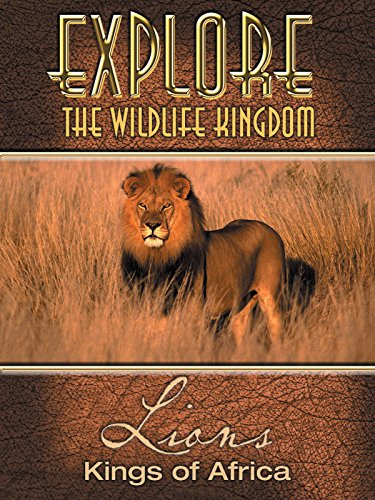amazon com  explore the wildlife kingdom  lions