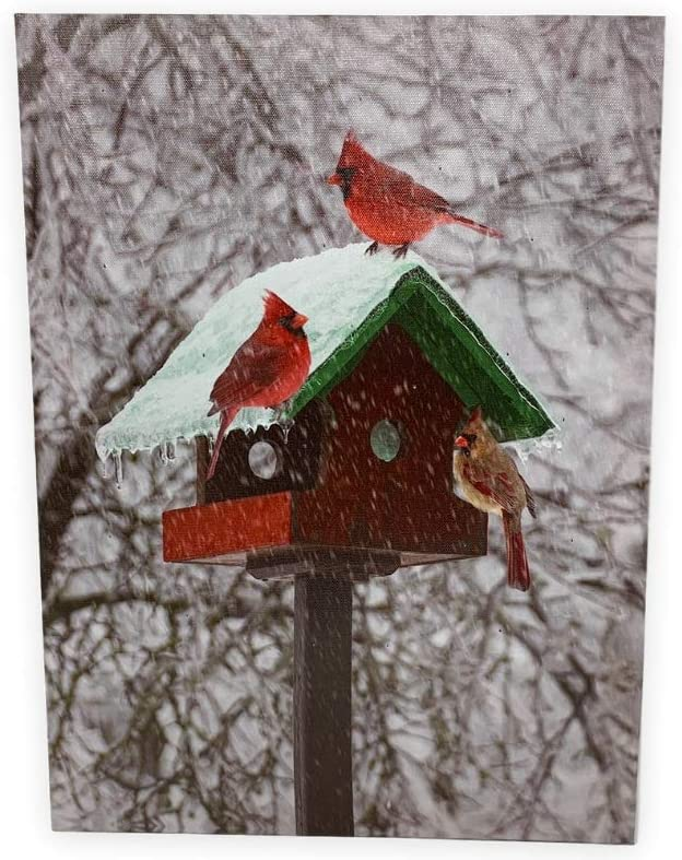 Amazon Com Banberry Designs Winter Cardinal Print Led Lighted Picture With Birdhouse And Cardinals Christmas Wall Art Home Kitchen