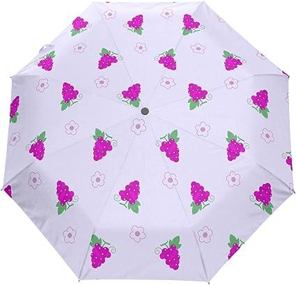Hulahula Art Music Automatic Umbrella Auto Open Close Folding Windproof Foldable for Men Women Kids