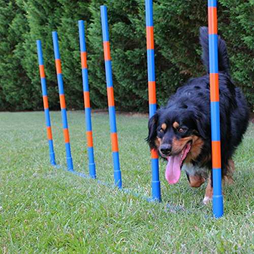 (Lord AnsonTM Dog Agility Weave Poles - Competition Grade Adjustable Agility Weave Pole Set - Dog Agility Equipment Set - 6 Weave Pole Set w/Carrying Case)