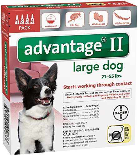 Bayer Animal Health Advantage II Large Dog 4-Pack (Best Flea Treatment For Dogs Advantage Or Frontline)