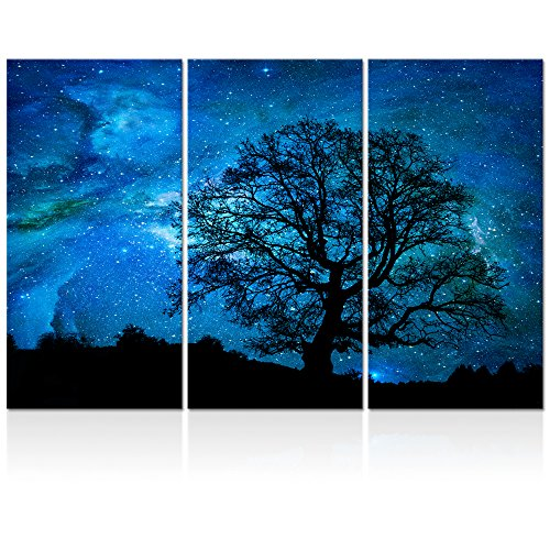 Landscape Canvas Wall Art,Modern Wall Art,Nature Picture Art,Canvas Prints,Oil Painting,Autumn Forest Wall Decor,Wall Decoration (Starry Night Large)