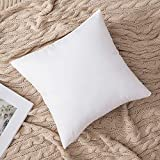 MIULEE Set of 2 Throw Pillow Inserts Hypoallergenic