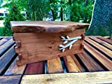 Primitive Apple wood Box with Holly Hinge and Intarsia