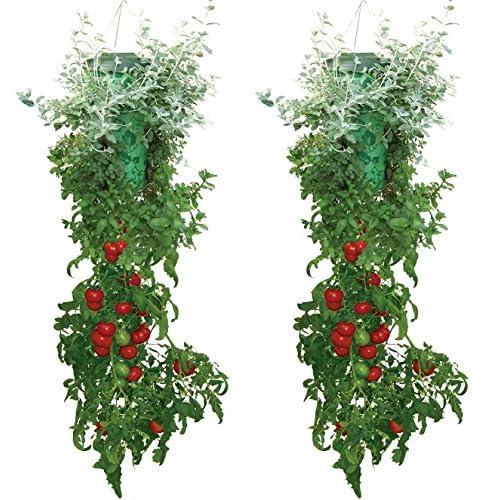 Tomato-Herb-Planter