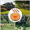 Blueyouth Grass Shears ?Weeding Head Grass Cutter Lawn Mower Accessories Dual Use Mower