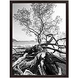 Art Shadow-Box 24x30 Walnut Wood frame by MCS® - 24x30