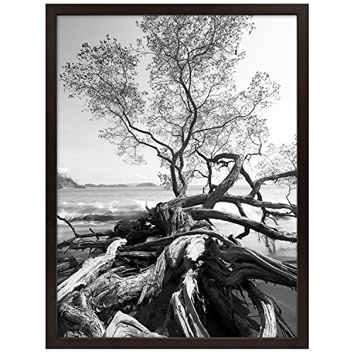Art Shadow-Box 24x30 Walnut Wood frame by MCS Our price is for 4 units - 24x30 by MCS