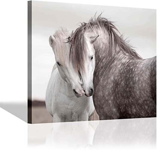 Animal Photo Painting White Horse Picture Canvas Art Print