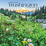 Washington Wild & Scenic 2021 12 x 12 Inch Monthly Square Wall Calendar, USA United States of America Pacific West Coast State Nature