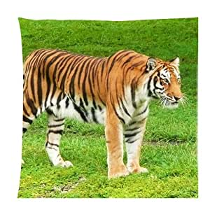 Tiger Animal in the Zoo green grass Zippered Pillow Cases Cover Cushion Case 18x18 Inch