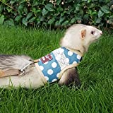 Kitten / Ferret Walking Jackets Padded Vest Cat Harness and Leash X-Small, Cat/Dog Harness and Leash for Walking Escape Proof